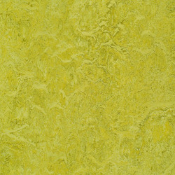 Marmoleum-Chartreuse